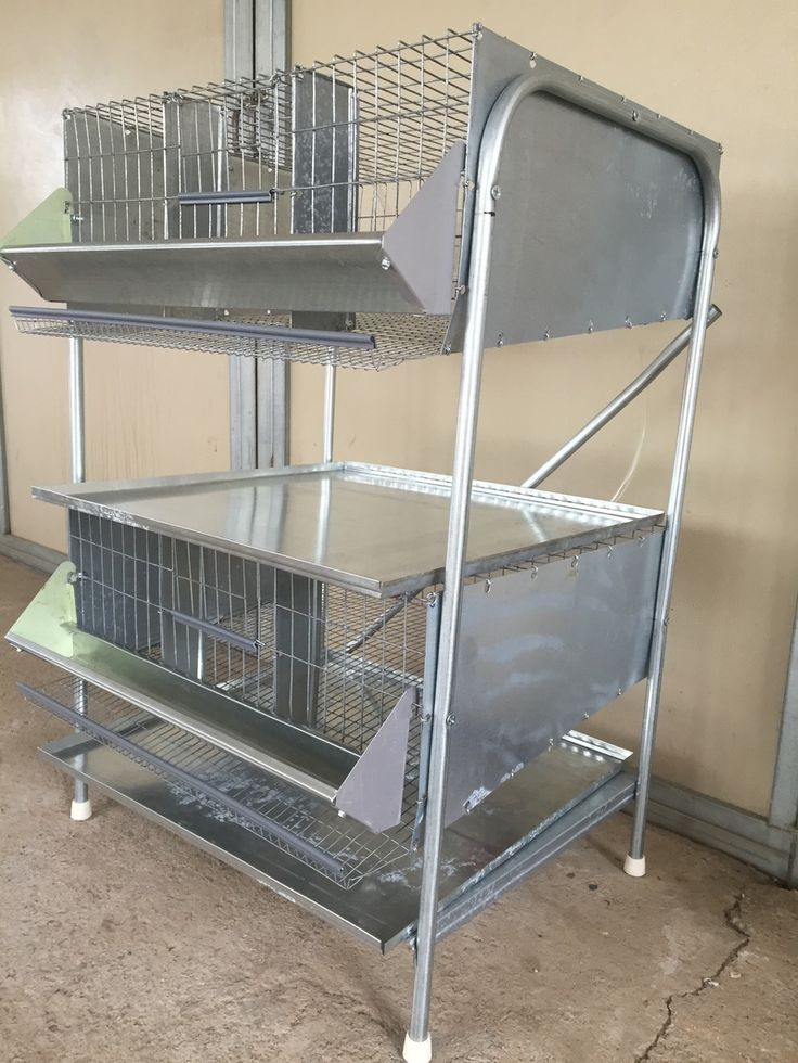 quails cage - photo #20