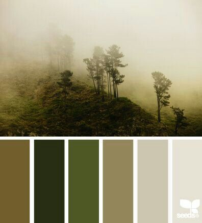 Misty wood tones
