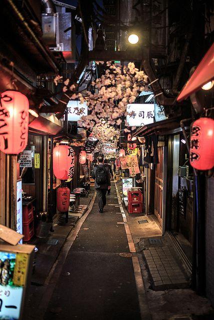 2013 Tokyo by Eskimo Pic, via Flickr