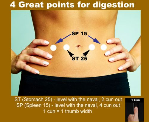 How to support digestion with Chinese Medicine » Meridian Massage InstituteMeridian Massage Institute