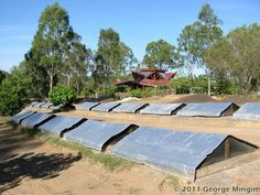 Interview With George Mingin – Kookaburra Worm Farms | Red Worm Composting