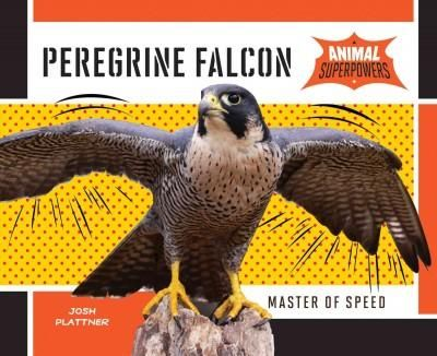 describing the unique characteristics of the peregrine falcon During a stoop, a falcon guides air away from its nostrils and use their third eyelids to breathe and see more easily in the high pressure of the drop peregrine falcons grow and develop development of the falcon.