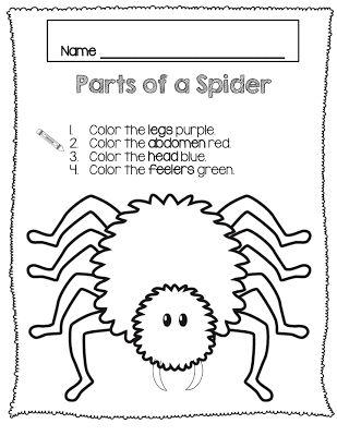 Parts of a Spider freebie Preschool