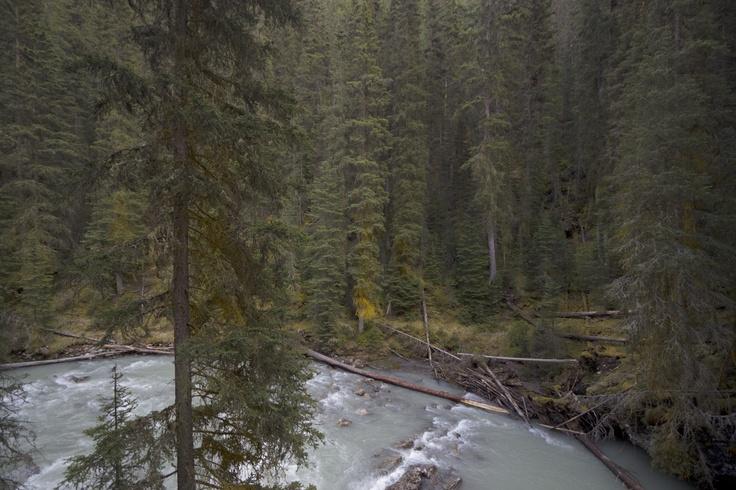 Photo © Jos Meijers #photography #travel #canada #outdoors #nature #alberta #banff