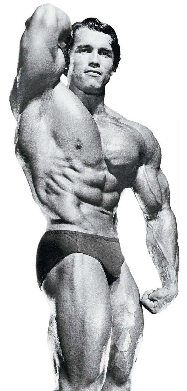 Muscles Quotes Schwarzenegger Arnold