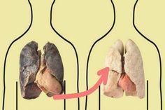 Dohányosoknak és volt dohányosoknak kötelező! Ezzel az itallal rövid idő alatt meg lehet tisztítani a tüdőt! | HírÚjság