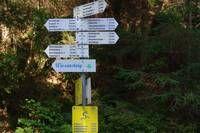 Der Wiesensteig-Rundwanderweg - Premium Wanderweg in Bad Peterstal-Griesbach im Schwarzwald