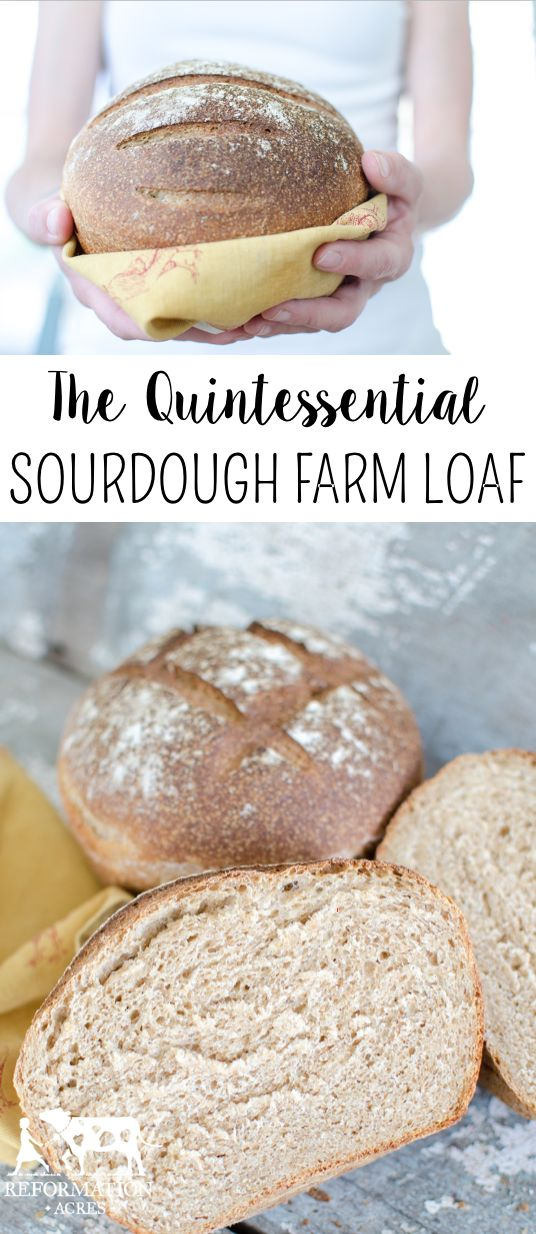 The Quintessential Sourdough Farm Loaf is a beautiful, hearty bread, good for sandwiches or mopping up soups and sauces. It's delicious and is SO easy bake.