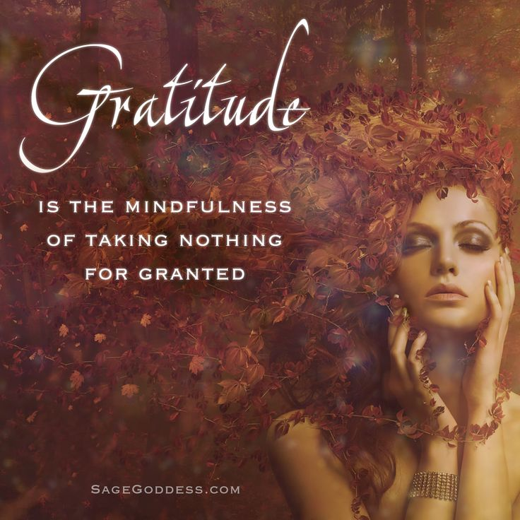 So often we wonder why the Universe isn't giving us what we have been asking for - we forget that gratitude is part of this cycle. And it's so profound - the more you acknowledge the things you're grateful for, the more you have to be grateful about! So with that, I ask you… what is one thing you've been taking for granted that you can show your gratitude for today?