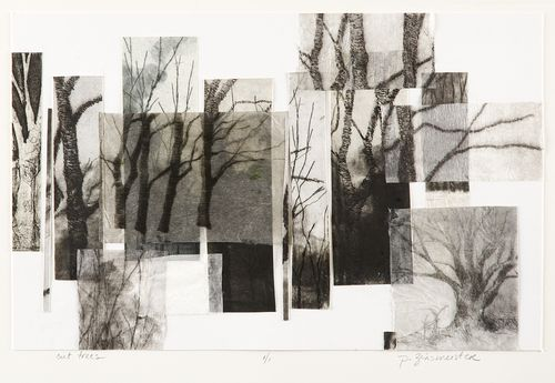 Paula Zinsmeister: Cut Trees - intaglio, aquatint, etching, collage