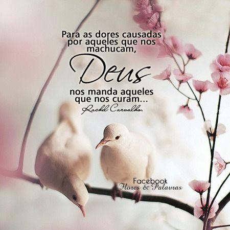 Deus nos faz encontrar pessoas tão especiais que se tornam anjos aqui na terra