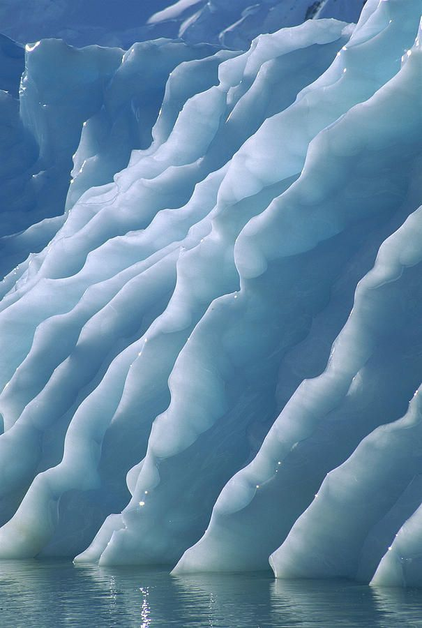 Fluted edges of newly rolled over iceberg in Paradise Bay, Antarctic Peninsula, Antarctica