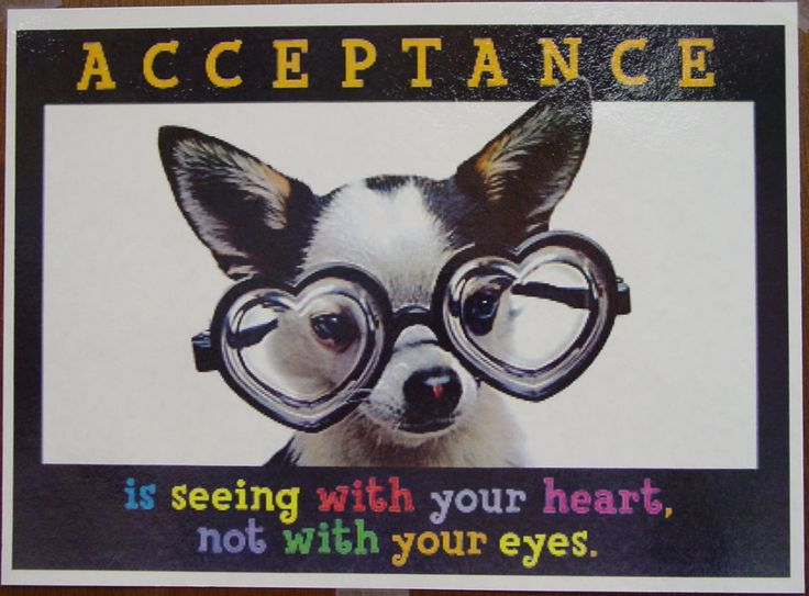 """Defining Family. PS – I Don't Hate You, I'm Too Busy Loving Someone I """"Shouldn't."""" Sincerely, Acceptance"""