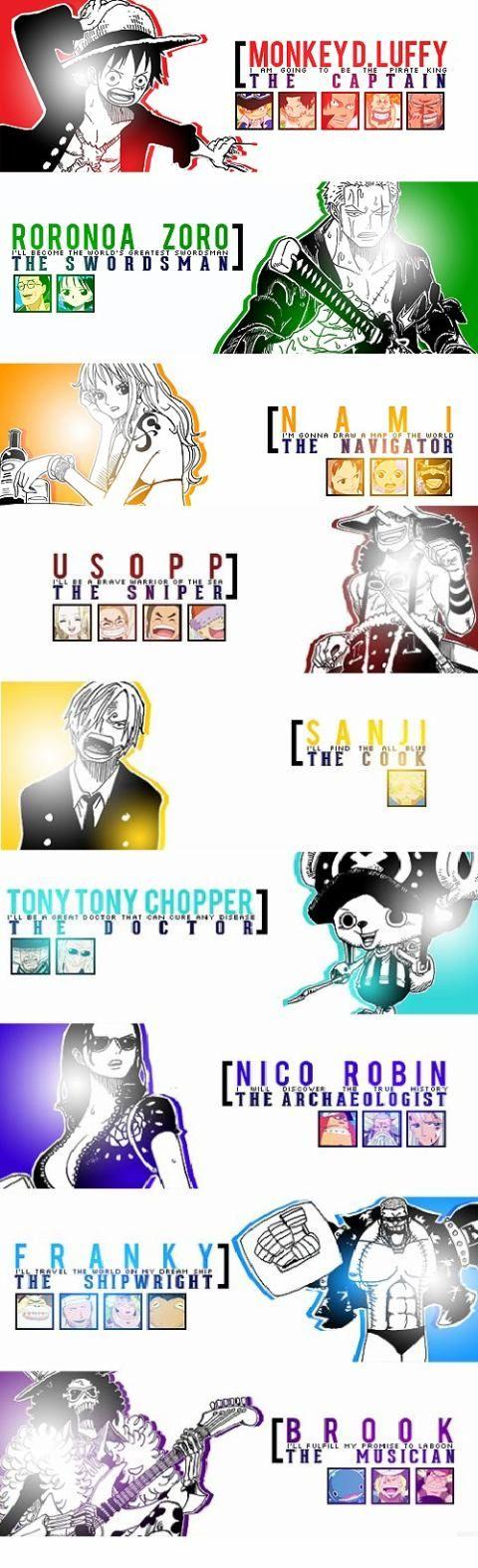 Their roles/Luffy,Zoro,Nami, Usopp,Sanji,Chopper,Robin, Franky,Brook/One piece