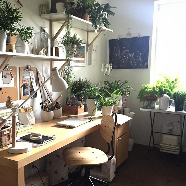 Be creative & efficient and surround yourself with plants!  :@manufaktura_splotow #urbanjunglebloggers