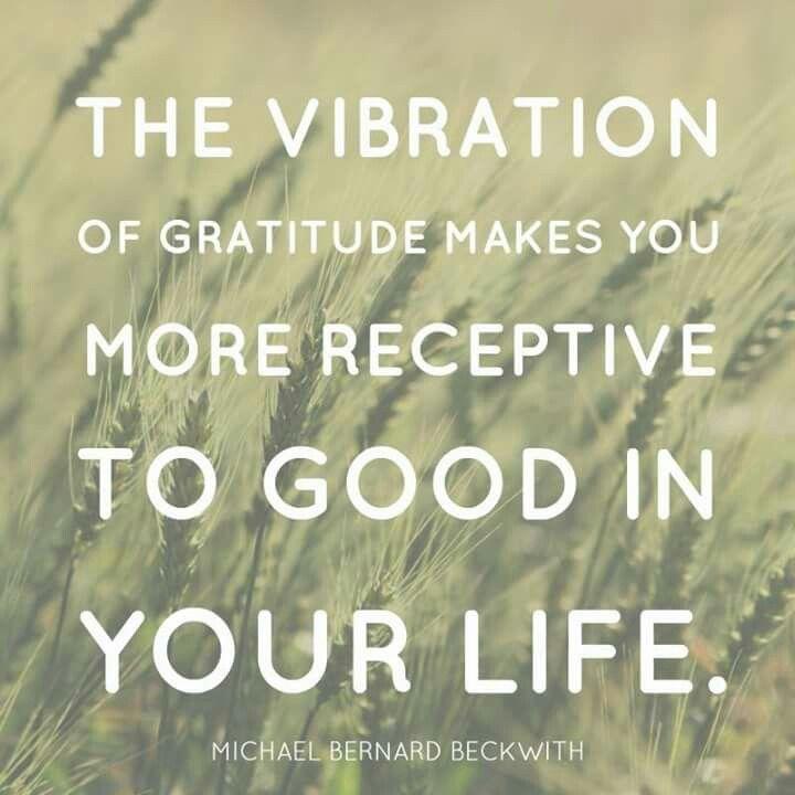 Vibration of gratitude...