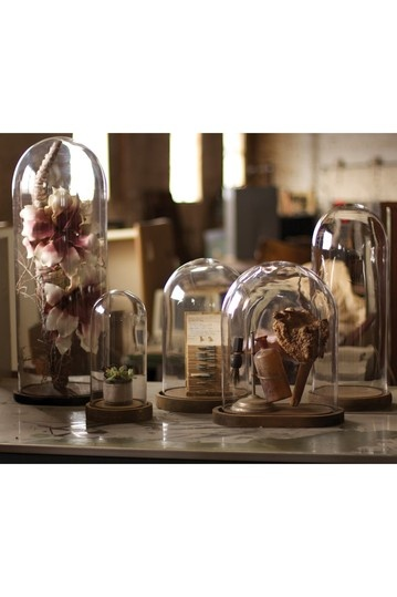 Best images about ideas for my bell jars on pinterest