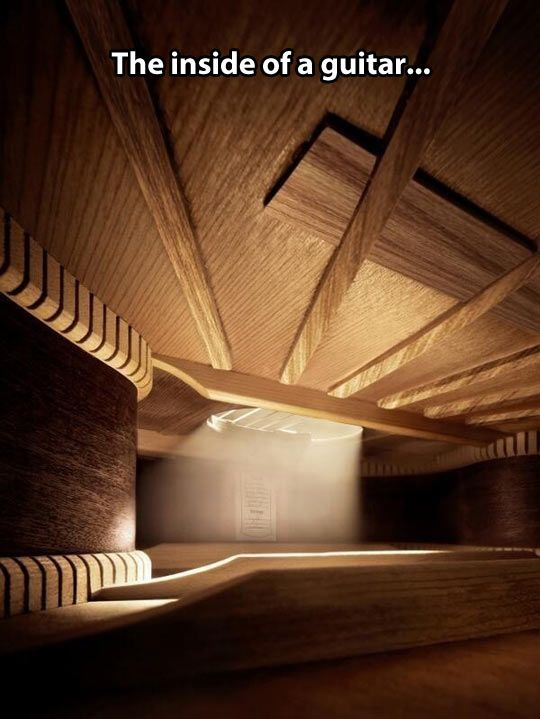 Inside a guitar…  this would be my getawayfromtheworld room.... yes.