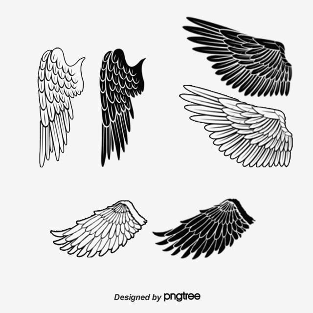 Wings Clipart Wings Clipart Animal Png Transparent Clipart Image And Psd File For Free Download Art Clipart Wings Png Clip Art