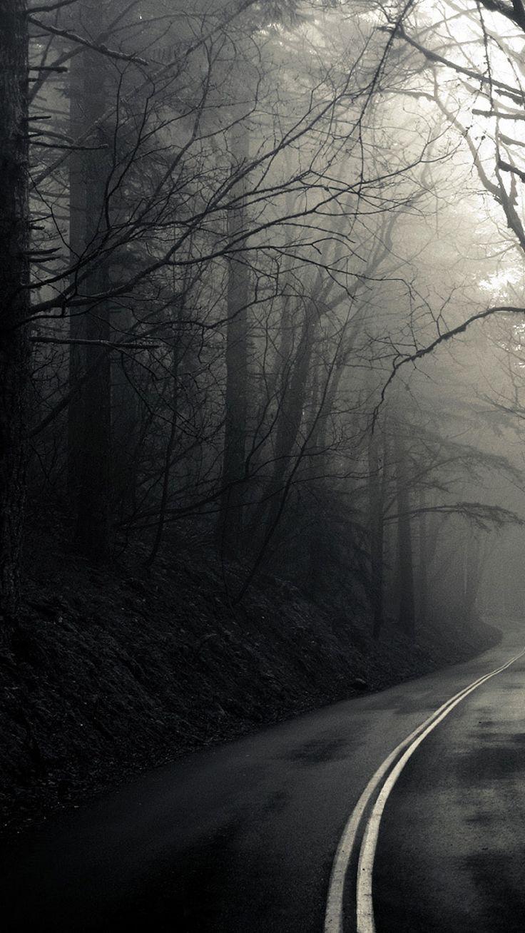 ☠KRALL☠ Gothic wallpaper, Forest road, Dark wallpaper