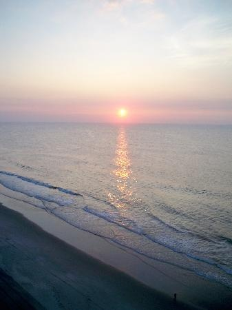 17 Best images about Garden City Beach SC on Pinterest Gardens