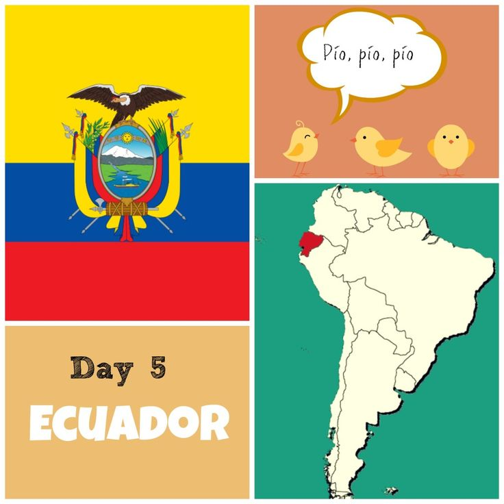 """Day 5 of the 24 Song Challenge takes us to Ecuador and the Song of the Day """"Los pollitos dicen""""."""