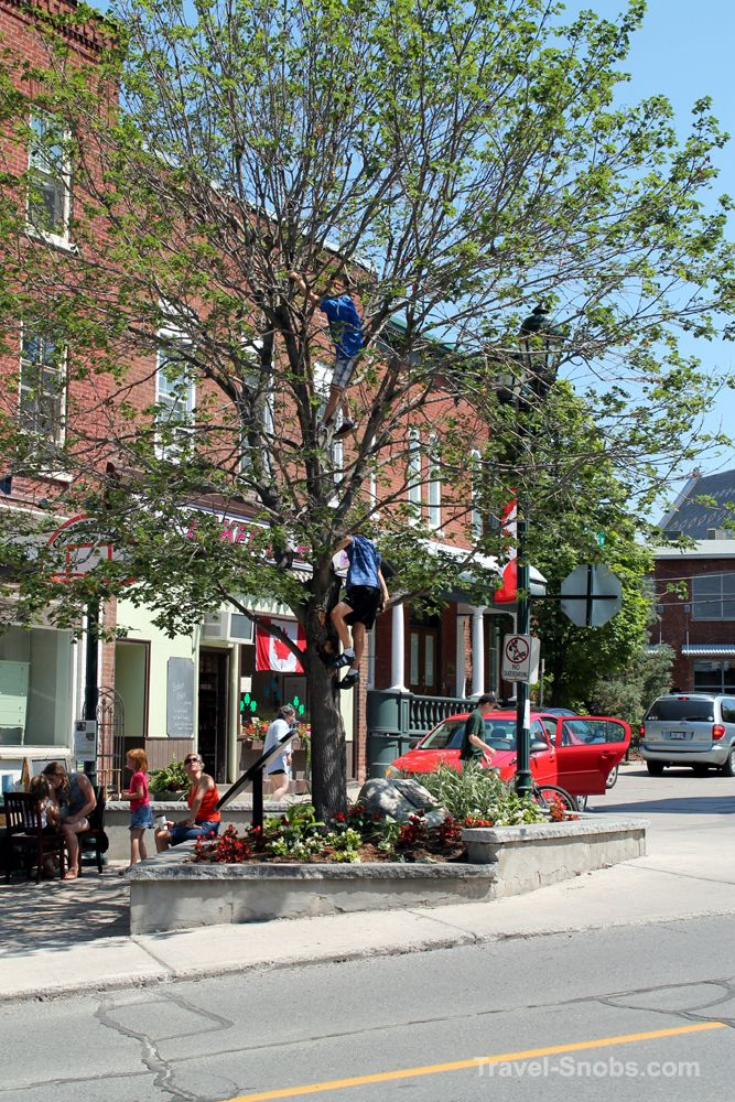 This is Main Street in Almonte, Ontario