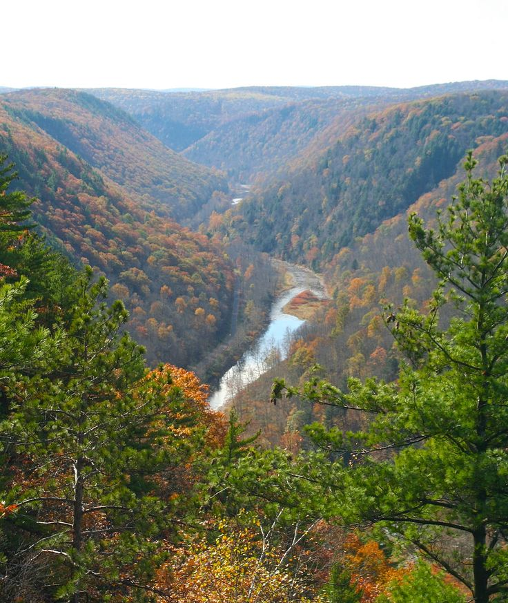 Grand Canyon Pa Directions%0A Pine Creek Gorge  The Grand Canyon of Pennsylvania