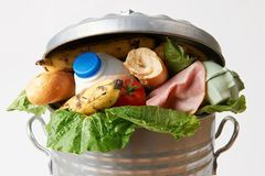 How much food waste do you send to landfill