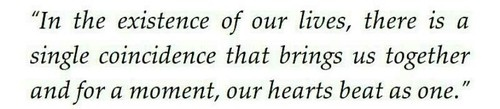 One of my favorite quotes ever in a book! (Jessica Sorensen - The Coincidence of Callie & Kayden)