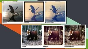 10 Photoshop Tricks You Can Do using the Gimp