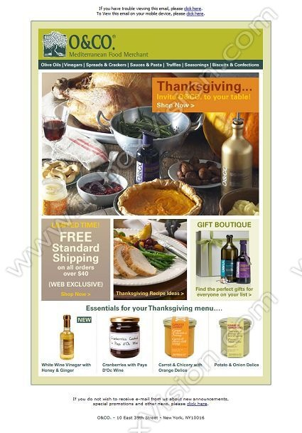 11 best Thanksgiving Emails images on Pinterest Thanksgiving - company newsletter