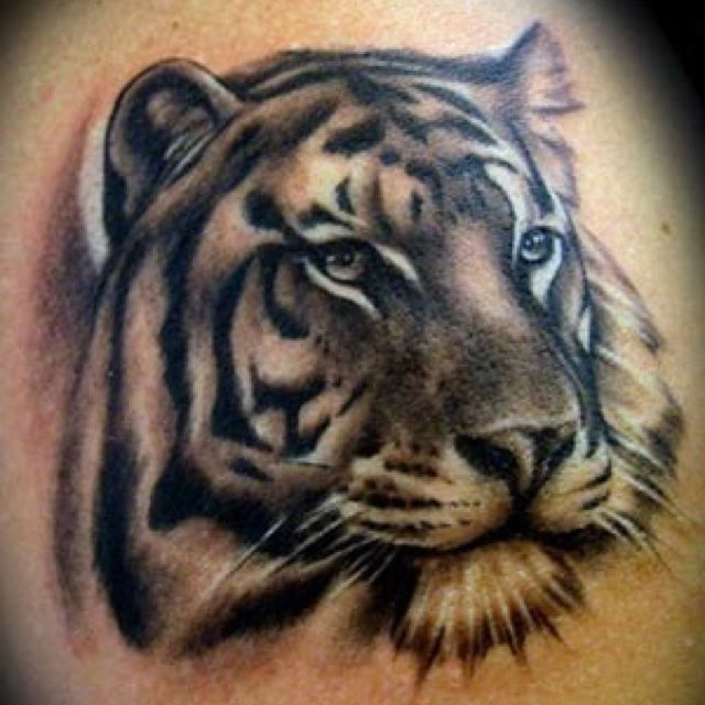 25 best ideas about tiger stripe tattoo on pinterest for Stretch mark tattoo camouflage