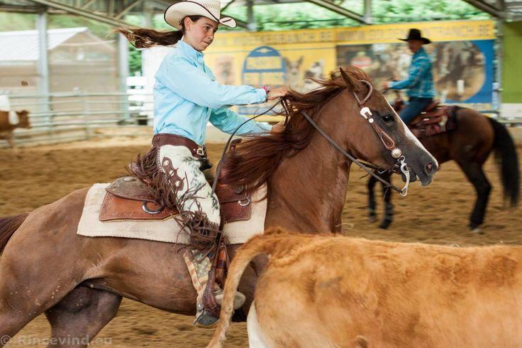 Lola De Wette | BTPA Cattle Challenge Llyda Stables 2015