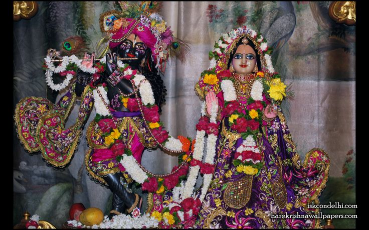 To view Radha Parthasarathi Wallpaper of ISKCON Dellhi in difference sizes visit - http://harekrishnawallpapers.com/sri-sri-radha-parthasarathi-iskcon-delhi-wallpaper-002/