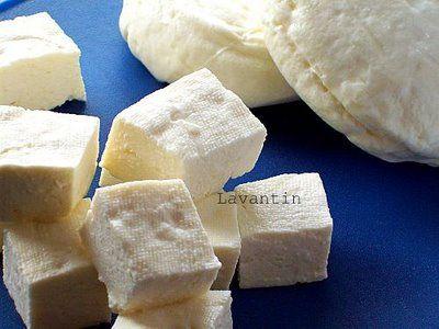 İlk denememden bu yana peynir çalışmalarım son sürat devam ediyor. Hemen hemen her hafta taze süt geliyor ve ben yarısını yoğurt yarısını peynir yapımı için kullanıyorum ve dışarıdan peynir almıyo…