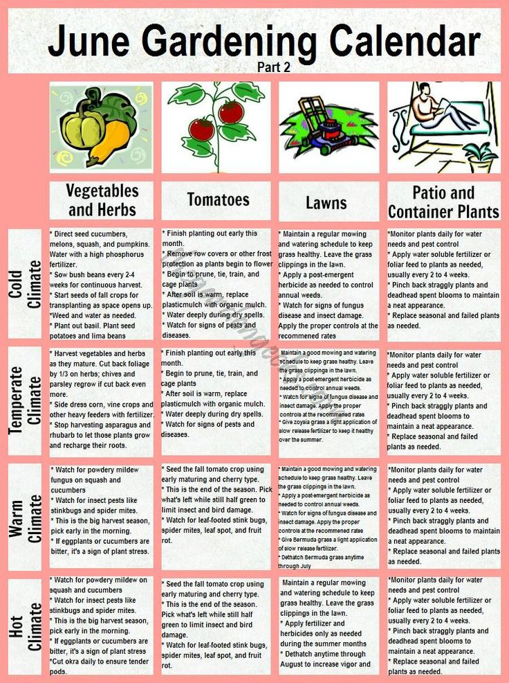 June Garden Calender Veggies, Lawns and Containers. For seed giveaways, daily tips and plant info, come join us on facebook! https://www.facebook.com/thegardengeeks