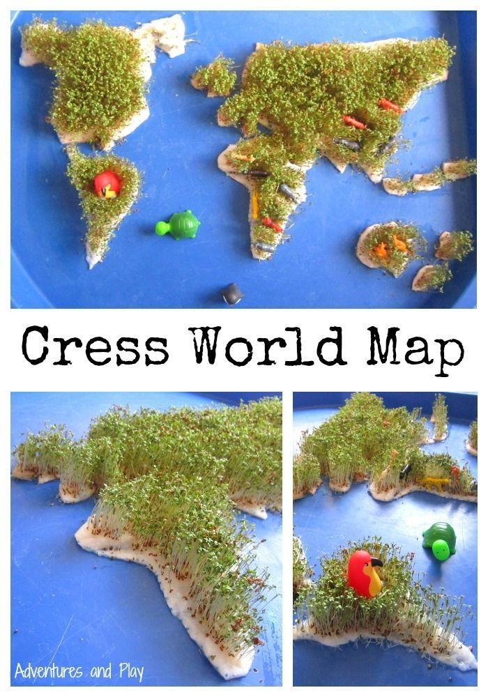 Cress World Map. Celebrate Earth Day with a sensory world map. Watch the cress seeds grow and then add animals from around the globe. A taste safe sensory world map Tuff Spot
