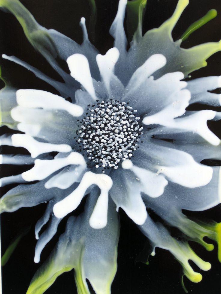 Hot Flower - encaustic wax painting by Phil Madley www.philmadley.com