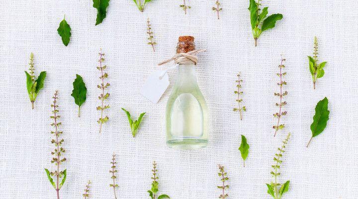 Esenciálne oleje, ako začať? | BioBlogerinas.sk