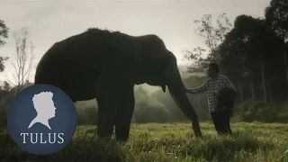 TULUS - Gajah (Official Music Video) - YouTube