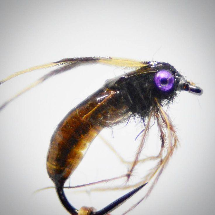 "169 Likes, 3 Comments - Ola Andersson (@orrholen) on Instagram: ""Purpleeyed Caddispuppa #12  #flugbindning #fliegenbinden #fluebinding #flytying #flyfishing…"""