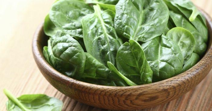 Spinat pflanzen - Hilfreiche Tipps zur Pflege dieser Pflanze