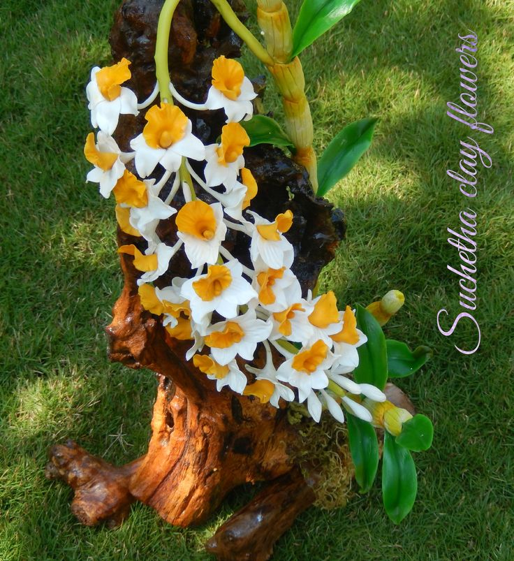 Dendrobium farmeri.. Handmade clay flowers.. Friends see my clay flowers page also.. https://www.facebook.com/suchethaclay?ref=hl