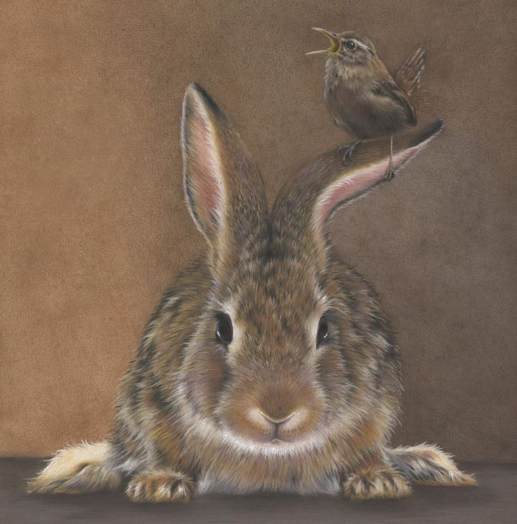 Eileen Sorg - Bending Your Ear -Colored Pencil Society of America News
