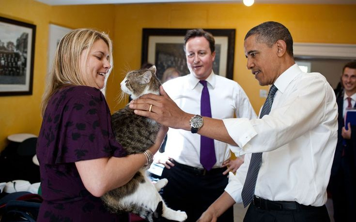 Larry the Cat meets Barack Obama.