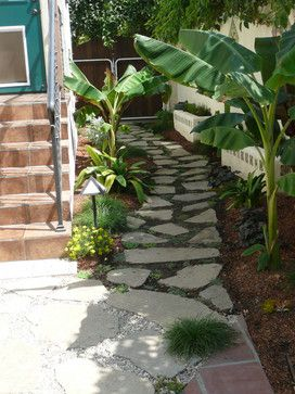 Santa Monica tropical landscape ~ love this for a side yard.