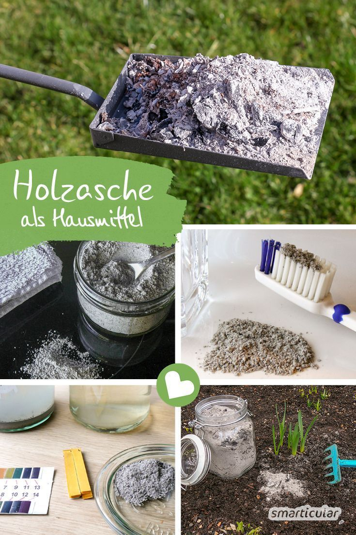 Ash Does Not Necessarily Have To Be Disposed Of The Right Wood Ash You Can My Blog Home Remedies Remedies Ash Wood
