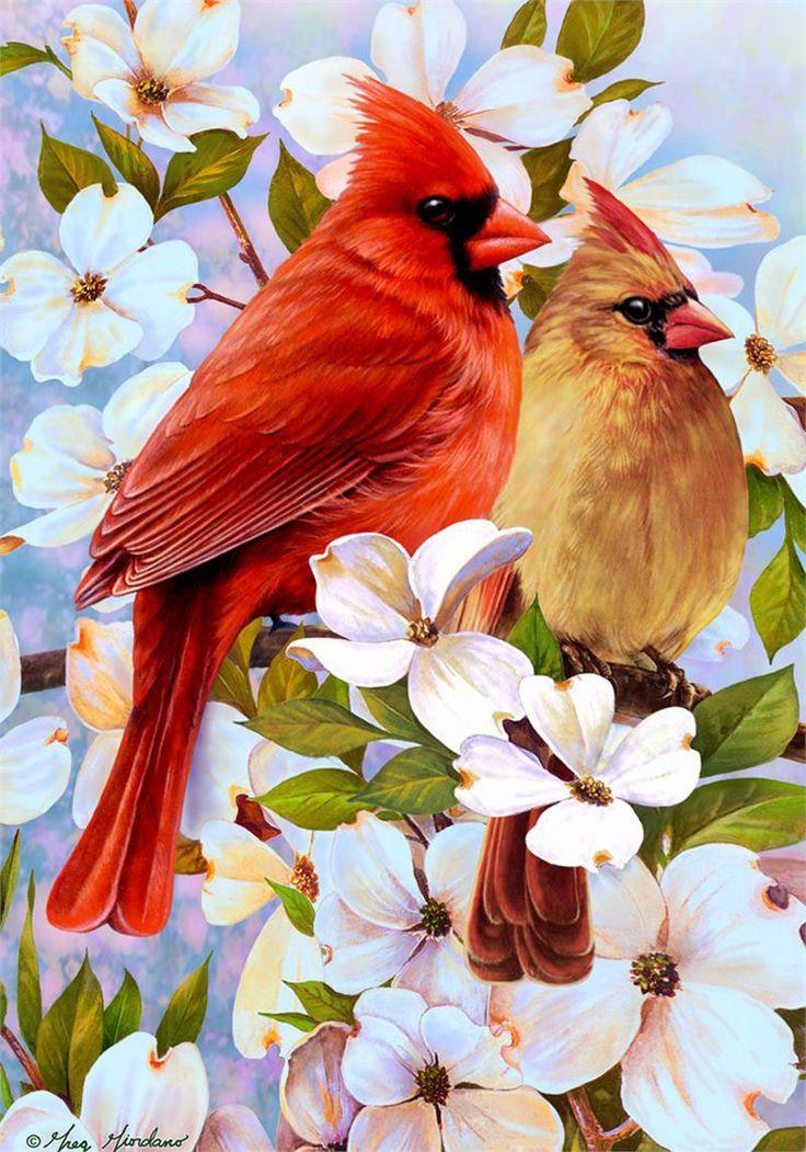 рисунки красивых птиц на цветах учитывать