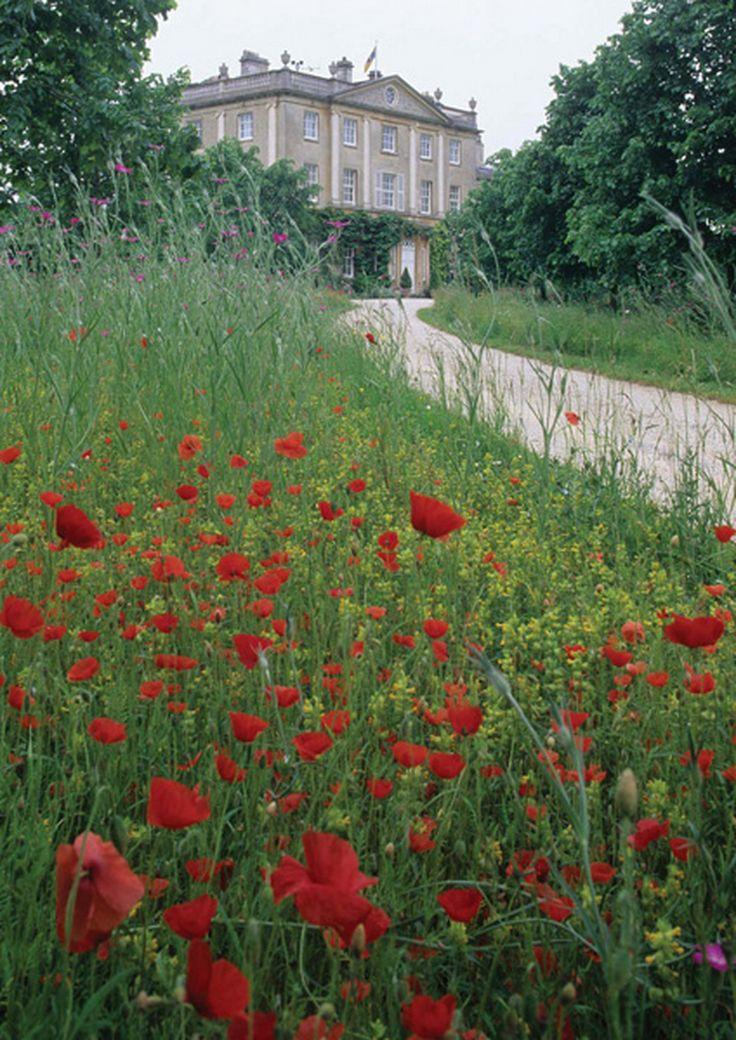 Highgrove gardens, designed and kept by Prince Charles ~ England